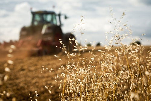 The current state of the grain market in the United States has led to layoffs and reduced activity for farming equipment manufacturers.